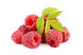 Red raspberries heap of with green leaves on white background Stock Photos