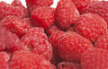 Red raspberries macro of fresh Royalty Free Stock Images