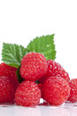 Red raspberries white background a group of freshly picked and washed with green leaves on reflective surface and Stock Photos