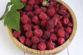 Red raspberries in a wooden bowl Royalty Free Stock Photo