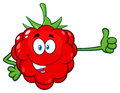 Red Raspberry Fruit Cartoon Mascot Character Holding A Blank Sign