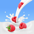 Red raspberry fruits and milk splash. 3d vector illustration