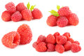 Red raspberry Royalty Free Stock Photo