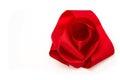 Red ribbon satin bows