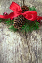 Red ribbon with tree branches and cones Stock Photos