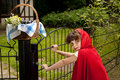 Red riding hood at gate Royalty Free Stock Photo