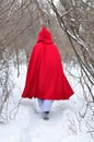 Red Riding Hood leaves on a footpath Stock Images