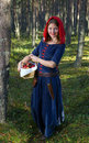 Red  Riding hood standing in a wood Royalty Free Stock Photos