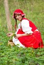 Red Riding Hood in the wood Royalty Free Stock Images