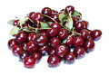 Red ripe cherry berries isolated Royalty Free Stock Photo
