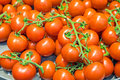 Red ripe tomatoes for sale Royalty Free Stock Photo