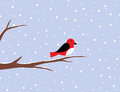 Red robin on a birch in snow illustration of Royalty Free Stock Photo