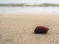 Red rock on the beach with blur sea background Royalty Free Stock Photography