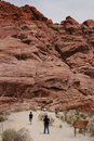 Red Rock Canyon Climbers Royalty Free Stock Photo