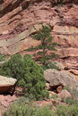 Red Rock Cliff Wall Royalty Free Stock Images