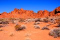 Red rocks of nevada vibrant valley fire state park usa Stock Photo