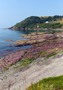 Red rocks talland bay beach between looe and polperro cornwall england uk on a beautiful blue sly sunny day Stock Photo