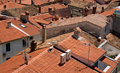 Red roofs Royalty Free Stock Photo