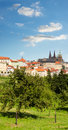 Red roofs and gardens of Prague in summer Stock Photos