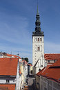 Red Rooftops in Tallinn Stock Images