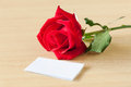 Red rose with blank card gift on table Stock Images
