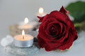 Red rose, with candles, solemn, festive, grief, Royalty Free Stock Photo
