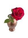 Red rose on ceramic vase isolated white background Stock Photo