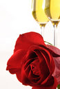 Red Rose and Champagne Royalty Free Stock Photography