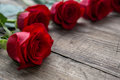 Red rose close up on wooden background Royalty Free Stock Photo