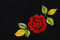 Red rose embroidery traditional mexican floral on black Royalty Free Stock Photo