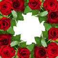Red rose flowers frame