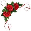 Red rose flowers and silk ribbon corner arrangement Royalty Free Stock Photo