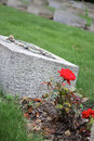 A red rose by a grave stone Royalty Free Stock Images