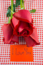 Red rose with message card Image of Valentines day Royalty Free Stock Photo