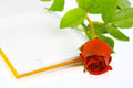 Red rose and orange notebook isolated Stock Image