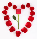 Red rose petal heart Royalty Free Stock Images