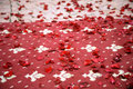 Red rose petals red carpet Royalty Free Stock Photo