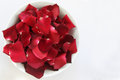 Red Rose Petals with space for text Royalty Free Stock Photo