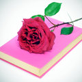 Red rose and a pink book Stock Photos