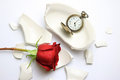 Red Rose and pocket watch laying on a broken bowl Royalty Free Stock Photo