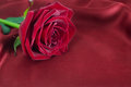 Red rose on silk Royalty Free Stock Photography