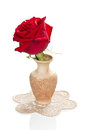 Red rose in a vase beautiful isolated on white Royalty Free Stock Images