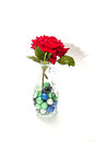 Red rose in a vase short stem surrounded Royalty Free Stock Image