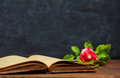 Red rose on a vintage book on dark background Royalty Free Stock Photo