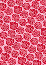Red rose wallpaper Stock Images