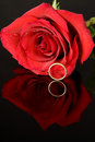Red Rose and Wedding Ring Royalty Free Stock Images