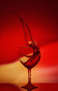 Red Rose Wine Tempting Abstract Splashing on gradient background of the yellow and red colors on the reflective surface Royalty Free Stock Photo