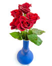 Red roses in blue vase Stock Photos