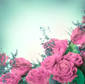 Red roses a bouquet of floral background Royalty Free Stock Images