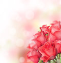 Red roses bouquet with free space for text Stock Photo